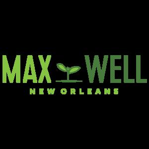 Max Well - Deep Fried